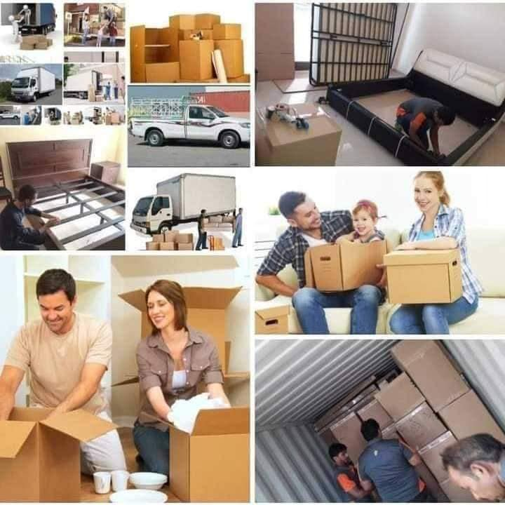movers packers services