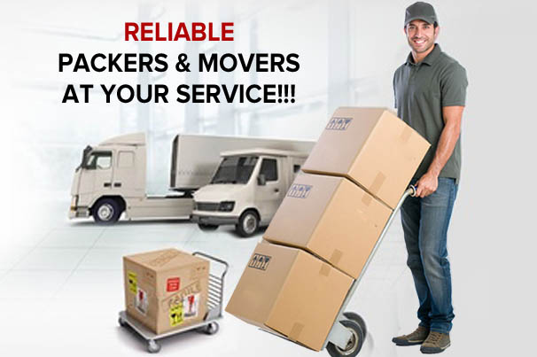 movers packers supervisor